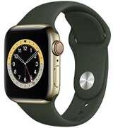 Apple Apple Watch Serie6 GPS+Cell40mm Gold St.Steel / Cyprus Grn Sport B.